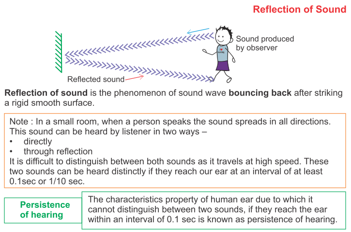 What Is Multiple Reflection Of Sound A Plus Topper