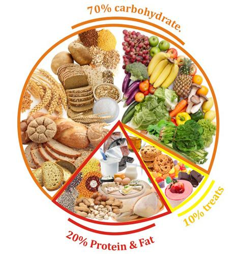 Food Diets For Runners