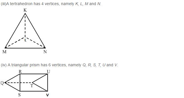 Three Dimensional Shapes RS Aggarwal Class 8 Maths Solutions Ex 19A 3.2