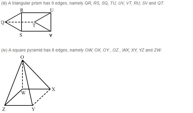 Three Dimensional Shapes RS Aggarwal Class 8 Maths Solutions Ex 19B 2.2