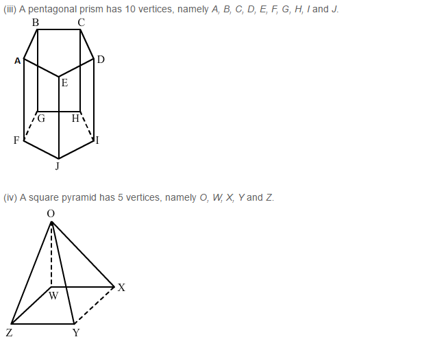 Three Dimensional Shapes RS Aggarwal Class 8 Maths Solutions Ex 19B 4.2