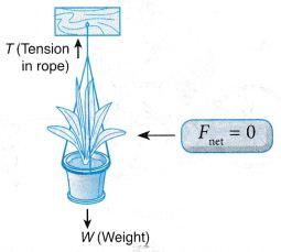 What Are The Effects Of Force On An Object 3