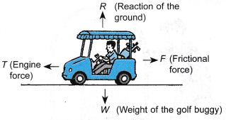 What Are The Effects Of Force On An Object 5