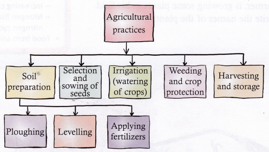 What Is Agriculture And What Are Agricultural Practices 1