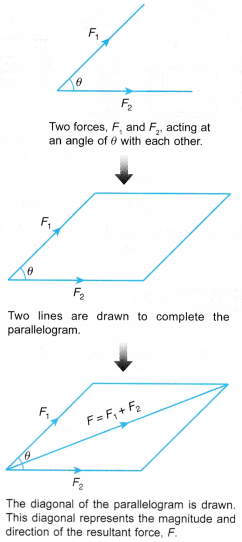 Analysing Forces in Equilibrium 19