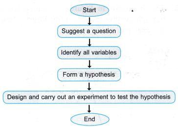 Applying Scientific Investigations 2