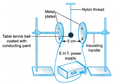 Effect of Electric Field on Objects Experiment 1