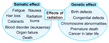 Realising the Importance of Proper Management of Radioactive Substances 5