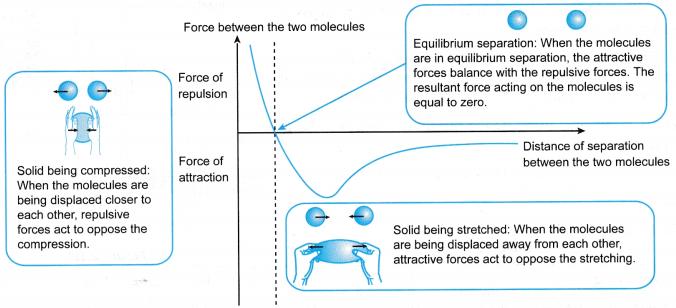 Understanding Elasticity 2