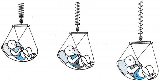 Understanding Elasticity 3