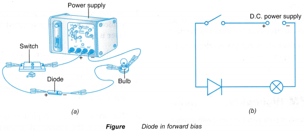 Understanding Semiconductor Diodes 10