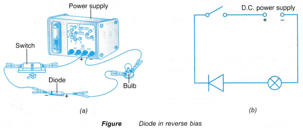 Understanding Semiconductor Diodes 11