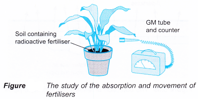 application of radioisotopes 3