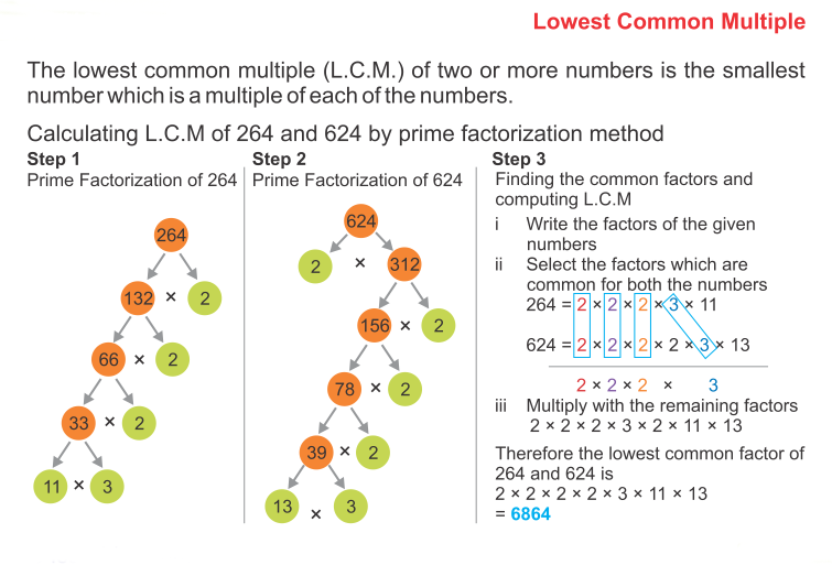 How to Find The Prime Factors Using Factor Tree 11