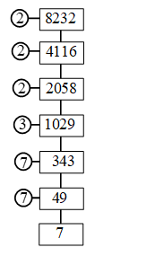 How to Find The Prime Factors Using Factor Tree 3