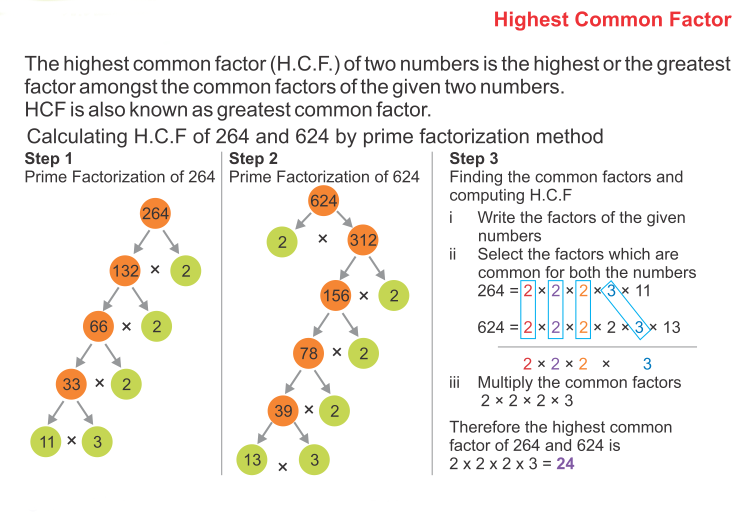 How to Find The Prime Factors Using Factor Tree 8