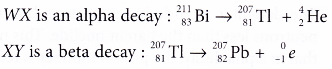 different types of radioactive decay 13