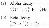 different types of radioactive decay 15