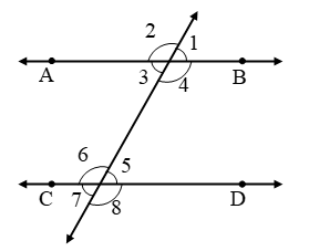 What are Parallel lines and Transversals 31