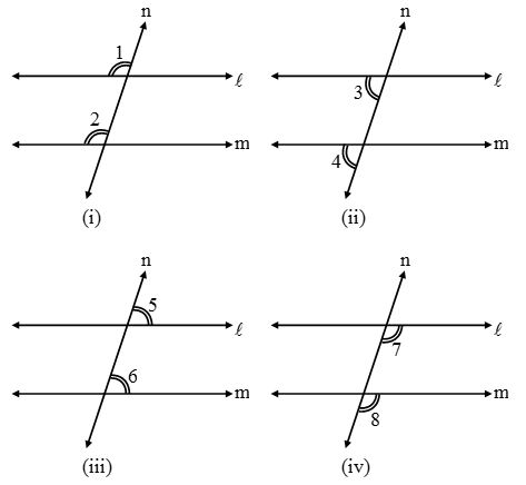 What are Parallel lines and Transversals 5