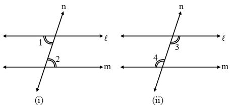 What are Parallel lines and Transversals 6