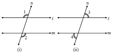 What are Parallel lines and Transversals 7