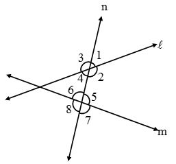 What are Parallel lines and Transversals 8