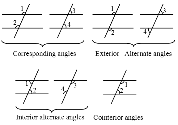 What are Parallel lines and Transversals 9
