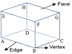 What are the Different Types Of 3-D Shapes 1