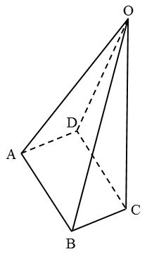 What are the Different Types Of 3-D Shapes 11
