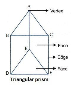 What are the Different Types Of 3-D Shapes 7