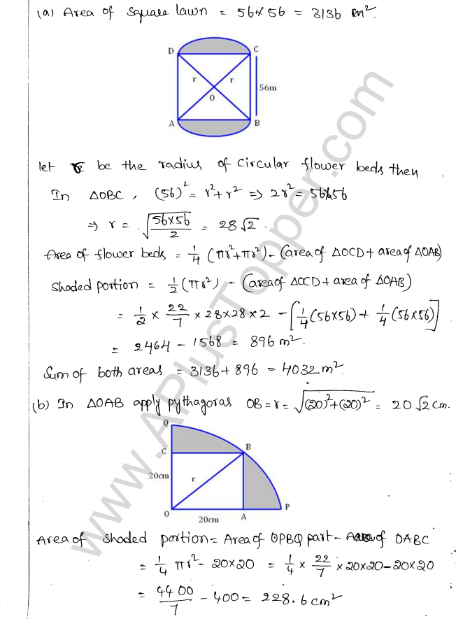 ML Aggarwal ICSE Solutions for Class 10 Maths Chapter 18 Mensuration Q1.19