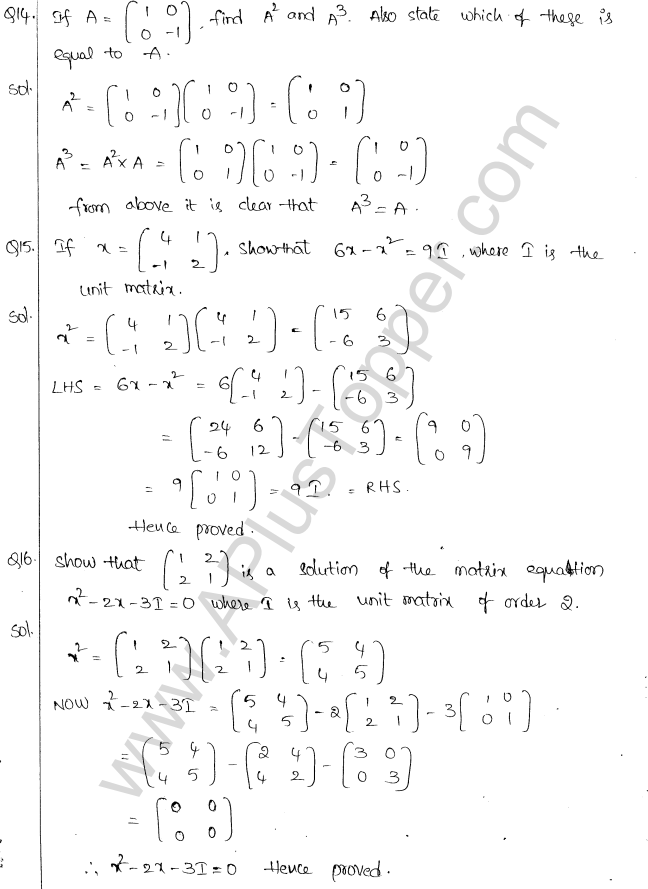 ML Aggarwal ICSE Solutions for Class 10 Maths Chapter 9 Matrices Q1.12