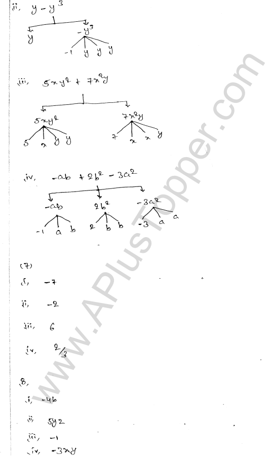 ml-aggarwal-icse-solutions-for-class-7-maths-chapter-8-algebraic-expressions-3