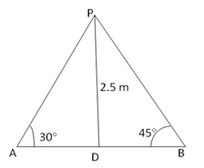 RS Aggarwal Solutions Class 10 Chapter 14 Height and Distance 14 26.1