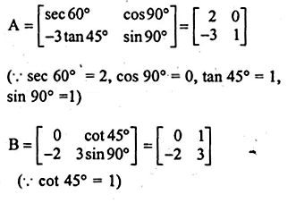 ML Aggarwal Class 10 Solutions for ICSE Maths Chapter 9 Matrices Chapter Test Q13.1
