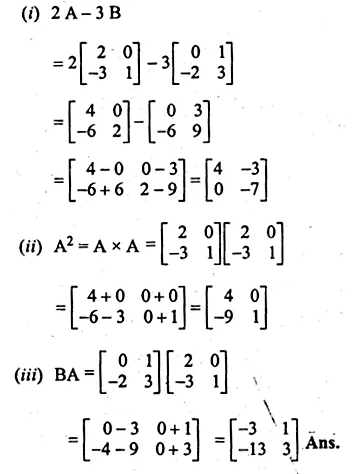 ML Aggarwal Class 10 Solutions for ICSE Maths Chapter 9 Matrices Chapter Test Q13.2