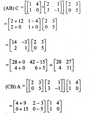 ML Aggarwal Class 10 Solutions for ICSE Maths Chapter 9 Matrices Chapter Test Q6.1