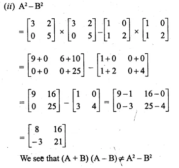 ML Aggarwal Class 10 Solutions for ICSE Maths Chapter 9 Matrices Chapter Test Q7.2