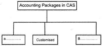 Plus One Accountancy Model Question Paper 1, 3