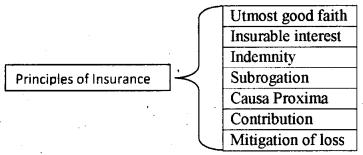 Plus One Business Studies Model Question Paper 1, 1