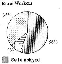 Plus One Economics Model Question Paper 1, 7