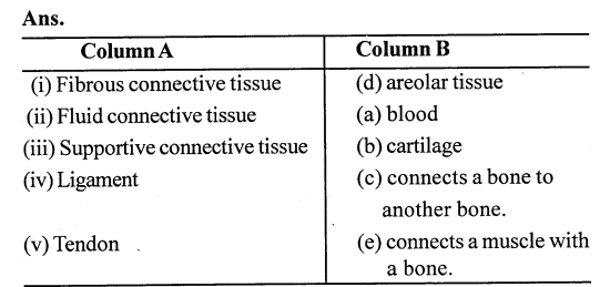 Selina Concise Biology Class 7 ICSE Solutions - Plant And Animal Tissues 1
