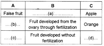 Plus Two Botany Chapter Wise Questions and Answers Chapter 2 Sexual Reproduction in Flowering Plants 2M Q40