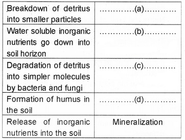 Plus Two Botany Chapter Wise Questions and Answers Chapter 7 Ecosystem 2M Q42