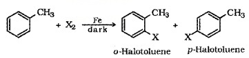 Plus Two Chemistry Notes Chapter 10 Haloalkanes and Haloarenes 11