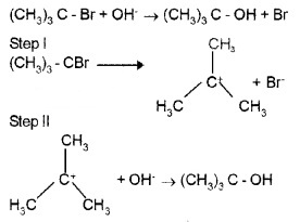 Plus Two Chemistry Notes Chapter 10 Haloalkanes and Haloarenes 17