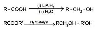 Plus Two Chemistry Notes Chapter 12 Aldehydes, Ketones and Carboxylic Acids 28