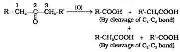 Plus Two Chemistry Notes Chapter 12 Aldehydes, Ketones and Carboxylic Acids 32
