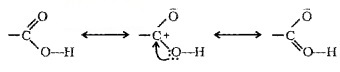 Plus Two Chemistry Notes Chapter 12 Aldehydes, Ketones and Carboxylic Acids 38